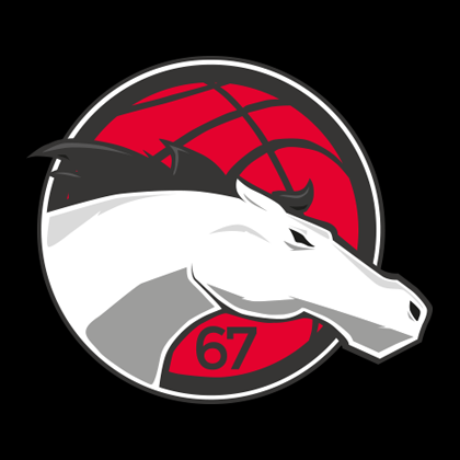 Leicester Riders WBBL