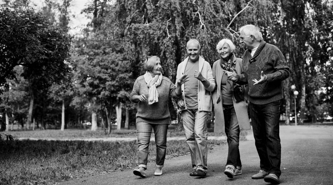 Active Ageing Park Walking Group